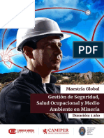 maestria-ssoma.pdf