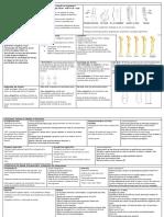 OSTEOLOGIA RADIOGRÁFICA - Resumo Final.pdf