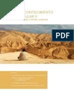 Guion_AcontecimientoSingularII (1).pdf