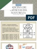 Oficina de Ciências Da Natureza