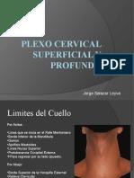 Plexo Cervical Superficial y Profundo