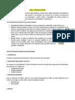 Resumens Traumatologia COMPLETO