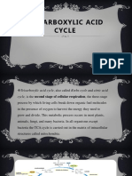 Tricarboxylic-Acid-Cycle.pptx