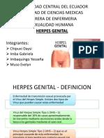 Herpes Genital2