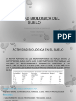 actividad biologica del suelo-