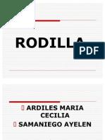 Rodilla Samaniego Ayelen Ardiles
