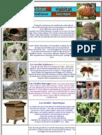 Habitat des abeilles ruches.pdf