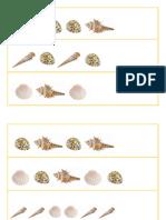 Conchas.pdf
