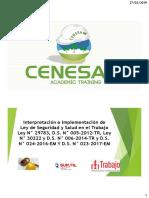 1) CURSO DE INT LEY 29783 Y OTRAS NORMAS.pdf