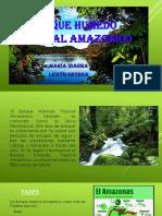 Bosque Humedo Tropical Amazonico[1]