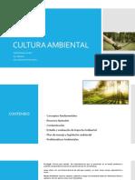 CULTURA AMBIENTAL (1).pdf