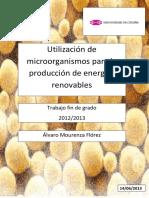 MourenzaFlorez_Alvaro_TFG_2013.pdf