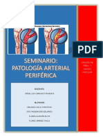 Patología Arterial Periférica Zambo China Alexis
