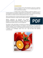 ALIMENTOS TRANSGENICOS -NELIDA Nª3.docx