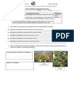 Guía de Trabajo Recursos Naturalesrecursos naturales