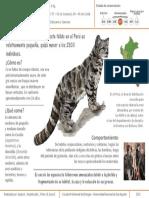 Infografía de Leopardus jacobita