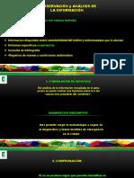 HONGOS FITOPATOGENOS Procedimiento.pdf