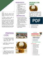 TRIPTICO CERRO DE PASCO ANITA.docx