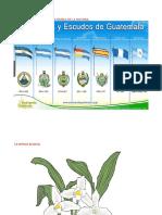 7 Banderas en Guatemala