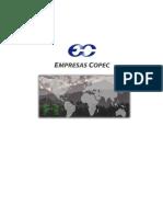 Informe de Copec Definitivo
