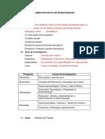 Pautas Para El Desarrollo Del Proyecto de Investigación FACISA (1)