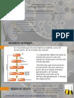 Expo Eficiencia Microbiana y Tipos de Cultivo Final