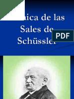 Clinica de Las Sales de Schussler