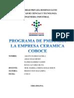 Programa de Pml Ceramica Coboce Final 1