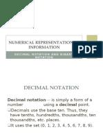 Numerical Representation of Information
