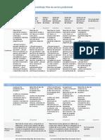 Rubrica Plan De Carrera Profecional.pdf