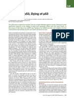 Living with p53, Dying of p53