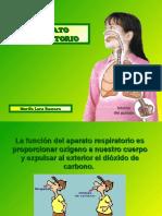aparato-respiratorio-52270-14860.pdf