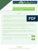 p3ner.pdf
