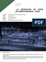 Analisis Produccion Pozos Petroleros Para Campos Maduros