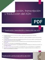 2.7 Replicación, transcripción y traducción del ADN