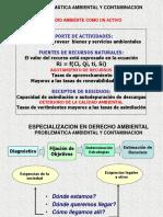 Acetatos de Problemàtica Ambiental y Contaminación
