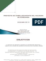 Proyecto de Malecon