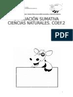 PRUEBA PLANTA Y ANIMALES.doc