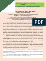 BIODIGESTOR CASEIRO PARA PRODUÇÃO DE BIOGÁS A PARTIR DE LIXO ORGÂNICO