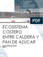 Ecosistema Costero Entre Caldera y Pan de Azucar