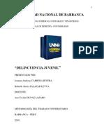 Cabrera-salazar Leyva Monografía