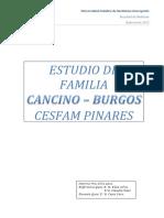 117655895-Estudio-de-Familia.docx