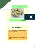 Fundamentos de La Multiplicación de Plantas Para Agricultores