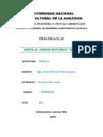 informe botanica.docx