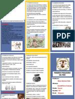 422208013 Triptico Primeros Pobladores Del Peru