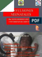 convulsionesneonatales-090410091319-phpapp02
