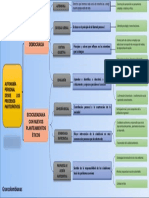 GRANCOLOMBIANAS+CUADRO+SINOPTICO.pptx