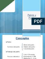 Diámetros de la Pelvis y Parto
