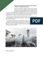 INCENDIOS EN LA AMAZONÍA.docx
