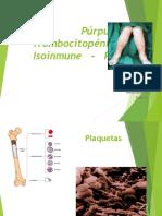 14670055 Purpura Trombocitopenica Isoinmune en Pediatria
